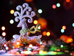 Неизвестные сломали новогоднего оленя в Сормовском районе