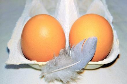 Пять страшных болезней, которыми рискуют заразиться любители натуральных продуктов