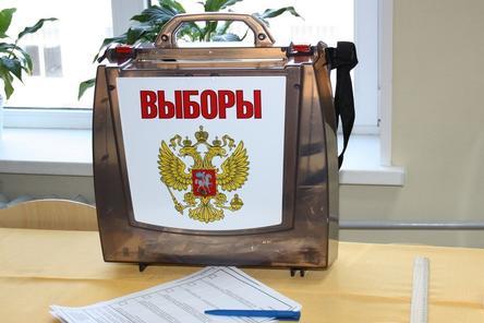 Явка на выборы в Нижегородской области составила 48,48%