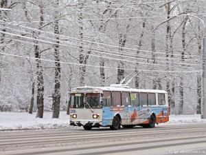 В Нижнем Новгороде на время открытия главной елки изменится движение автобусов и троллейбусов