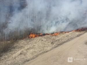 Высокая пожароопасность лесов сохранится в Нижегородской области до 29 июня