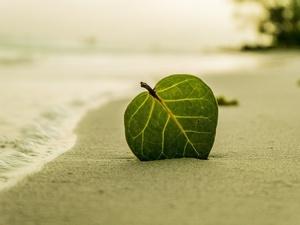 Пляж на берегу затона 25 лет Октября благоустроят в Ленинском районе за 12,5 млн рублей
