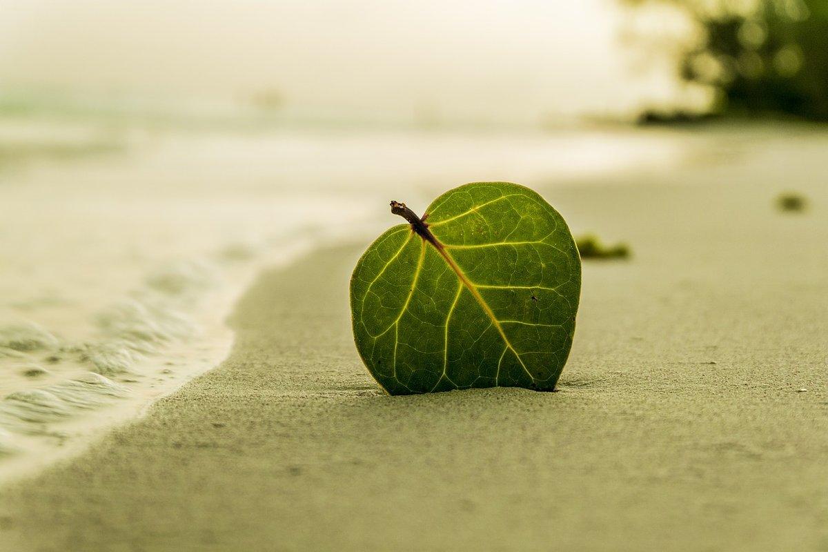 Пляж на берегу затона 25 лет Октября благоустроят в Ленинском районе за 12,5 млн рублей - фото 1
