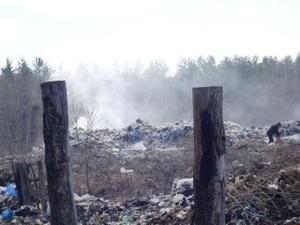 Администрацию сельсовета Краснобаковского района обязали убрать свалки