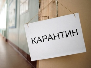 Почти три десятка школ и детсадов Нижегородской области закрыты на карантин по гриппу и ОРВИ