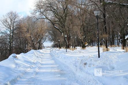 Более 750 деревьев посадят в Александровском саду