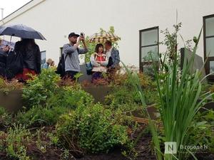 Сад в нижегородском крематории закрыли на зиму