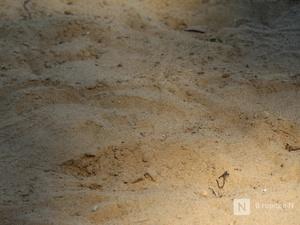 За нелегальный пункт перевалки песка нижегородскую компанию оштрафовали на 200 тысяч рублей