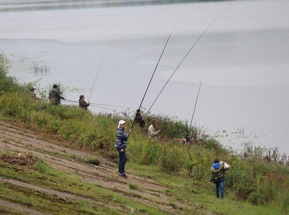 Три вида ухи и лодка в подарок: в Нижнем Новгороде стартовал фестиваль рыбалки - фото 25