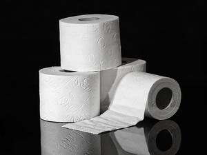 Можно ли смывать в унитаз туалетную бумагу?