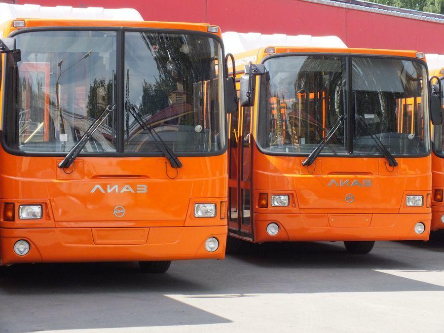 Автобусы нижний новгород новый год