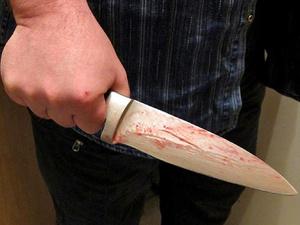 Давняя обида привела к убийству в Воскресенском районе