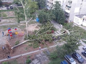 Экстренное предупреждение от МЧС: сильный ветер вернется в Нижний Новгород