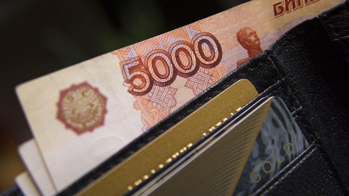 Три нижегородские охранные организации подозреваются в уклонении от уплаты налогов на 91 млн рублей - фото 1